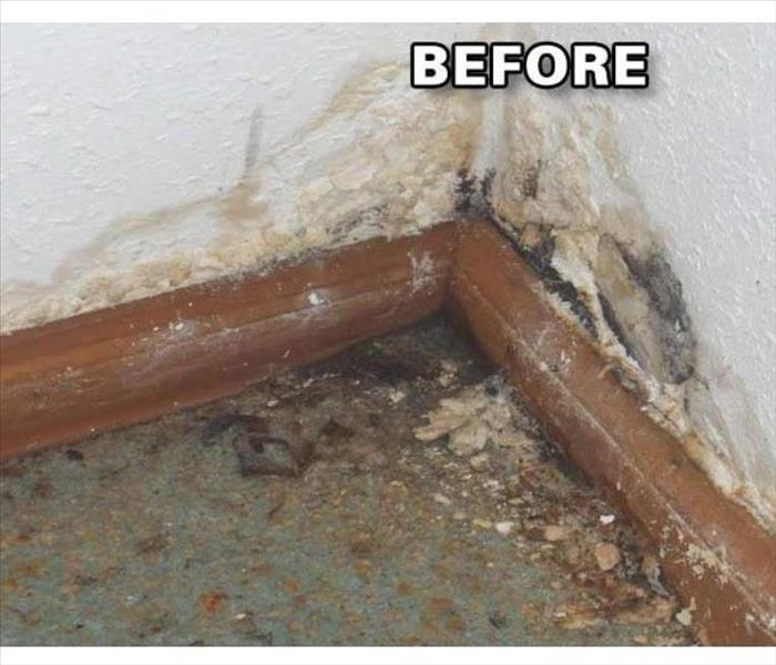 Mold & mildew build up in the corner of a home